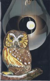 Companion - Owl - Sixth Chakra